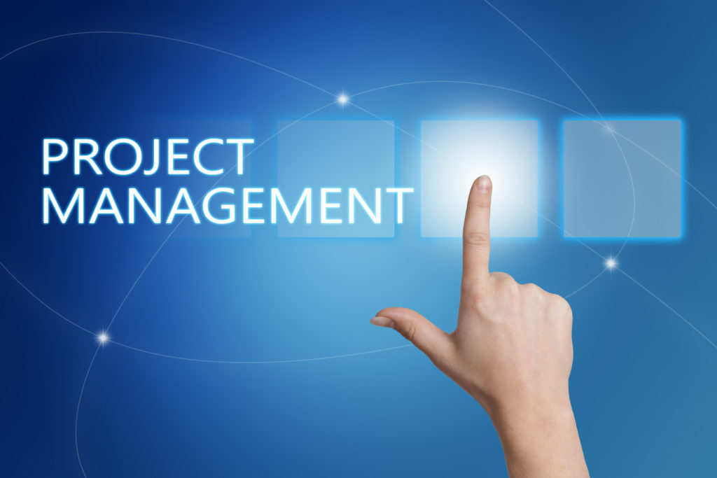 project risk manager
