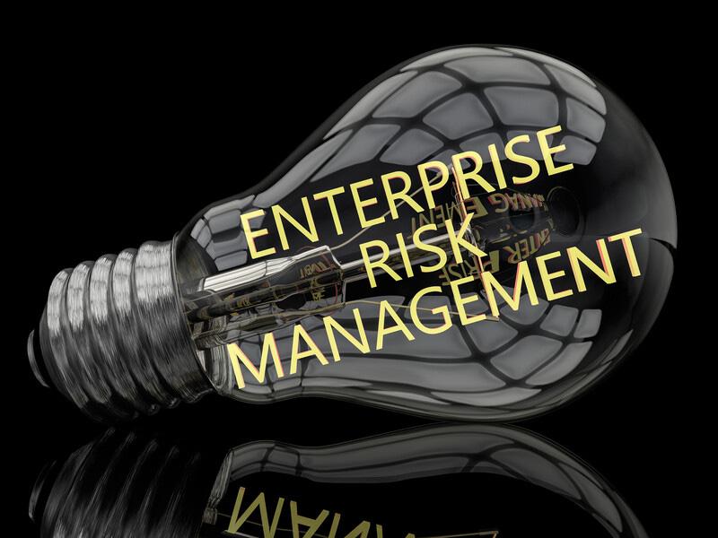 Enterprise Risk Management 101